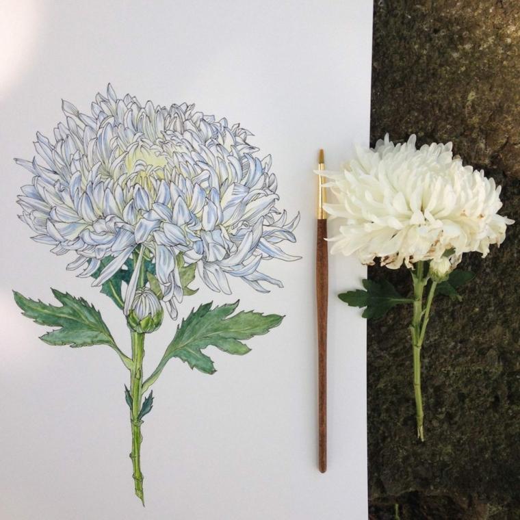 Fiori da colorare, disegno con pennello di un fiore con petali di colore bianco