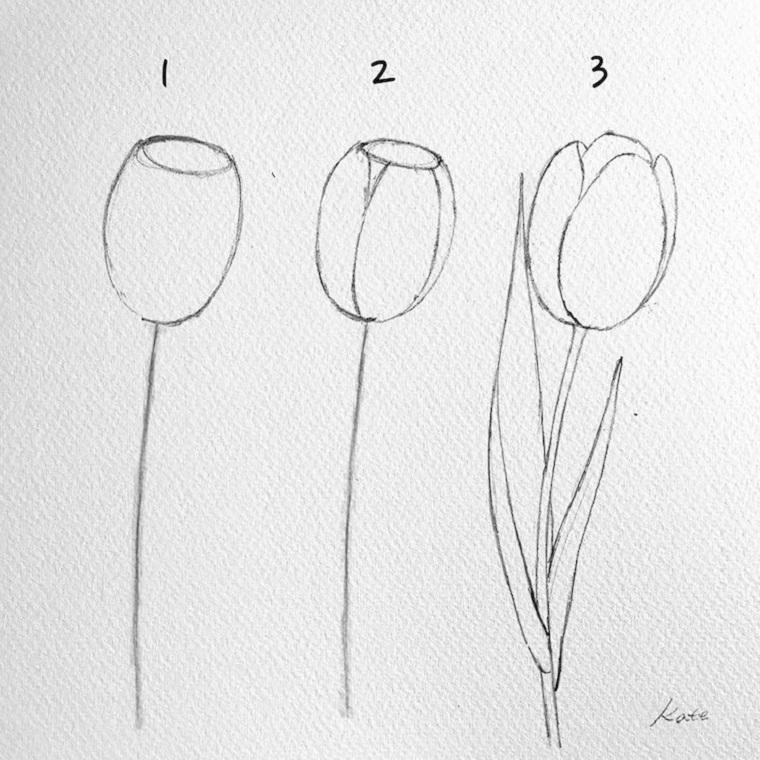 Fiori disegni da colorare, tutorial disegno a matita di tre tulipani da colorare