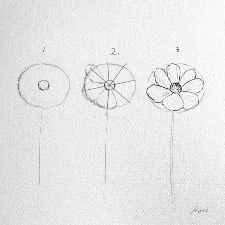 Fiori da colorare per adulti, tutorial disegno a matita di un fiore con petali
