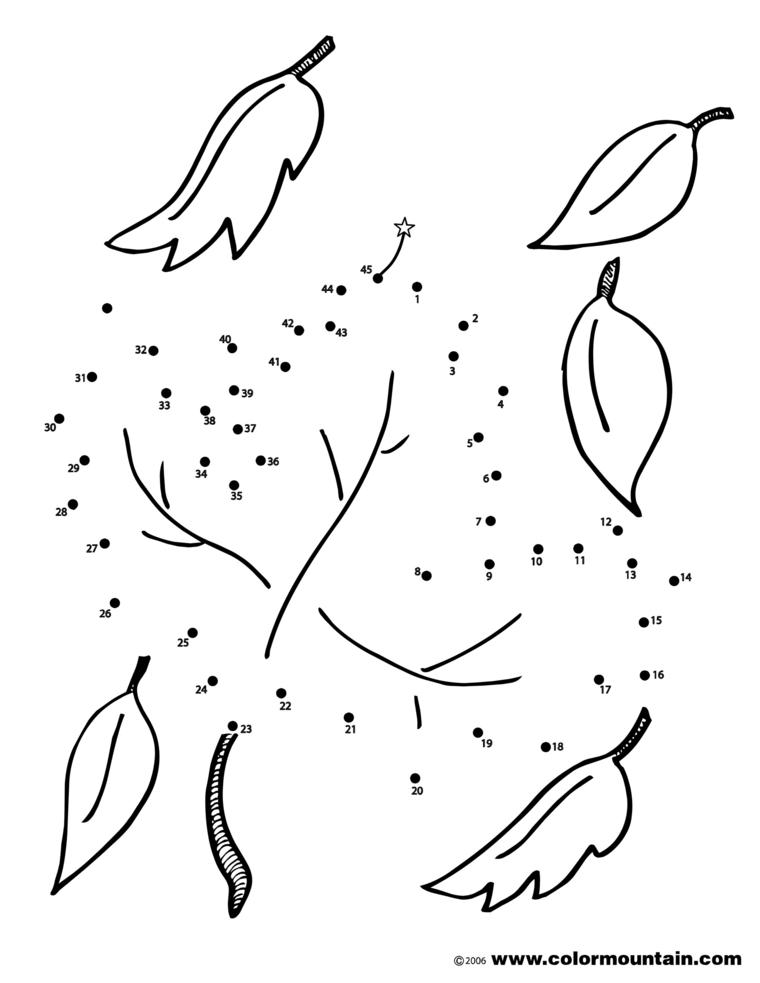 Disegno con punti da unire, foglio con disegno di foglie autunnali da colorare