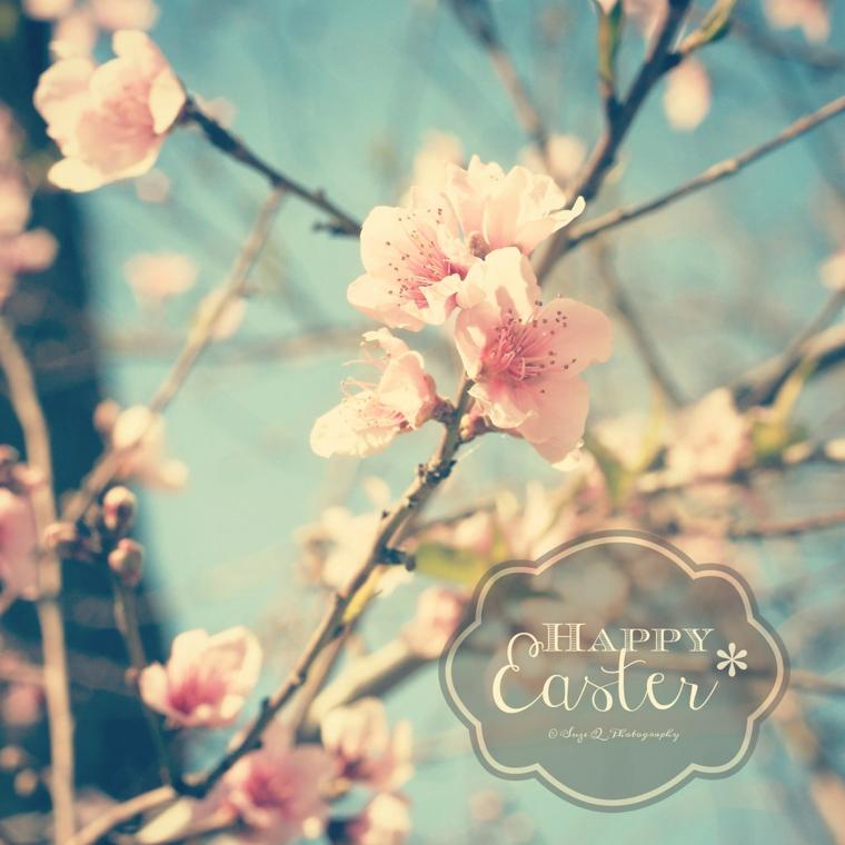 Auguri di Pasqua divertenti, foto di rami fiorito con scritta in inglese Happy Easter