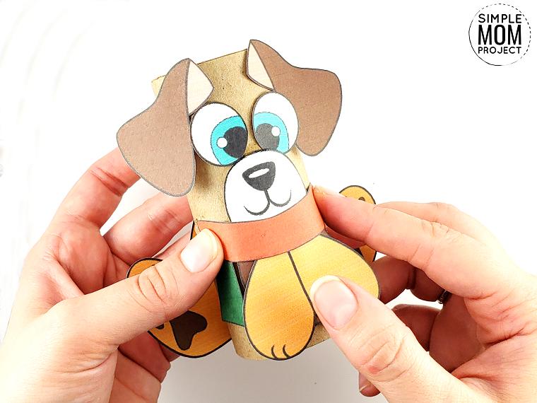 Animali con rotoli di carta igienica, cane con cartoncini colorati incollati