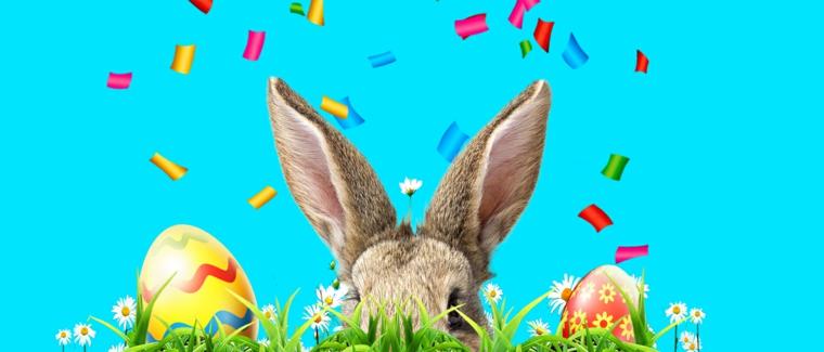 Foto delle orecchie di un coniglio e uova dipinte, foto con sfondo di colore blu