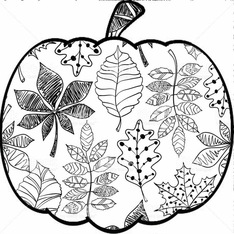 Disegno di una zucca con delle foglie all'interno, autunno da colorare
