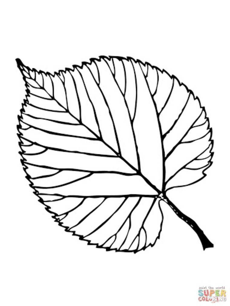 Immagini autunno da colorare, disegno di una foglia da stampare