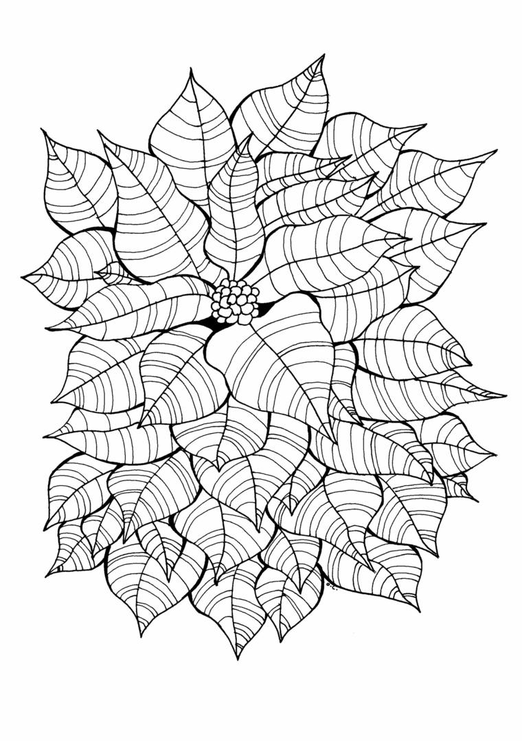 Disegno foglie autunno, foglio bianco con disegno di foglie con linee