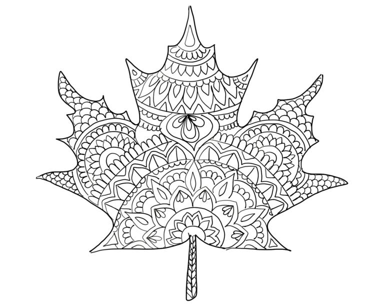 Disegno mandala da stampare e colorare, foglia autunnali con disegni mandala