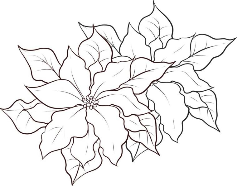 Disegno di una stella di natale, schizzo di foglie da colorare per bambini