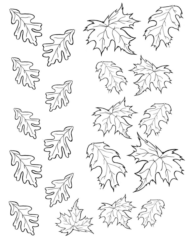 Immagini autunno da colorare, disegno di foglie da stampare e colorare
