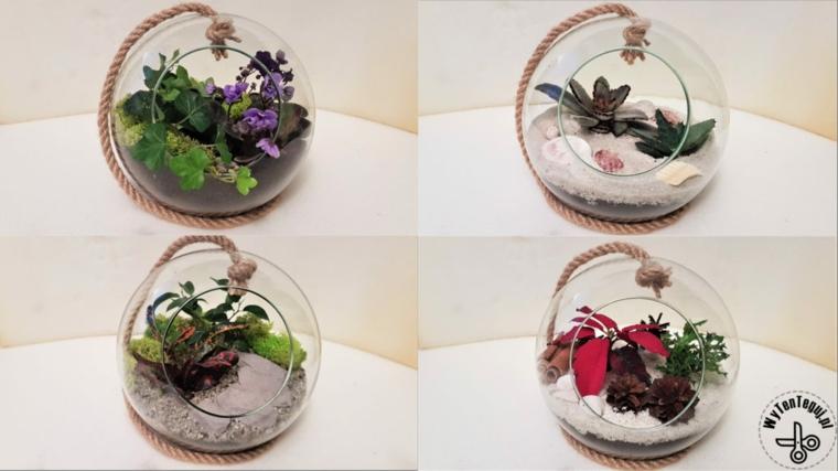 Regalo festa dei nonni, terrarium in contenitore di vetro con terriccio e piante