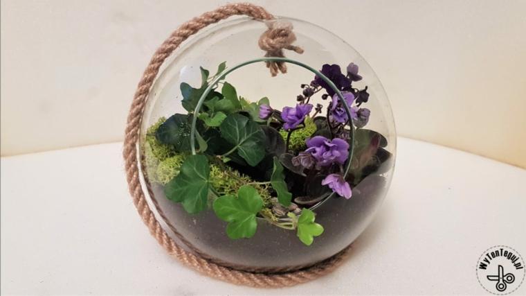 Lavoretti per la festa dei nonni, terrarium con piante e foglie verdi