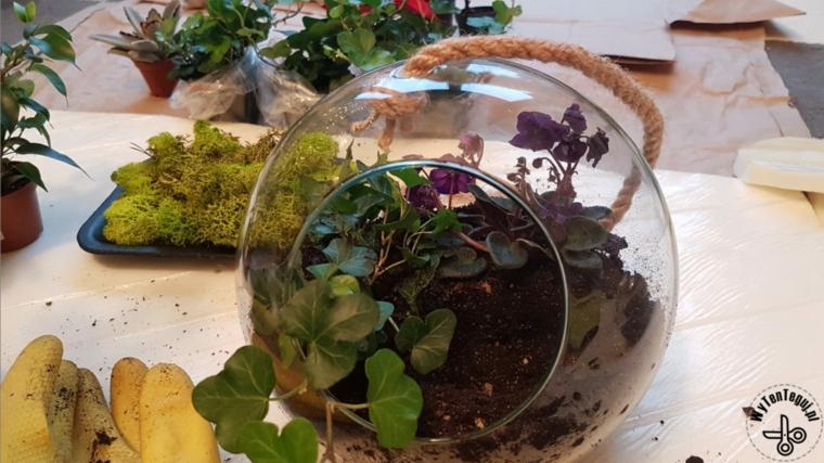 Festa dei nonni lavoretti, contenitore di vetro per terrarium con terriccio e piante