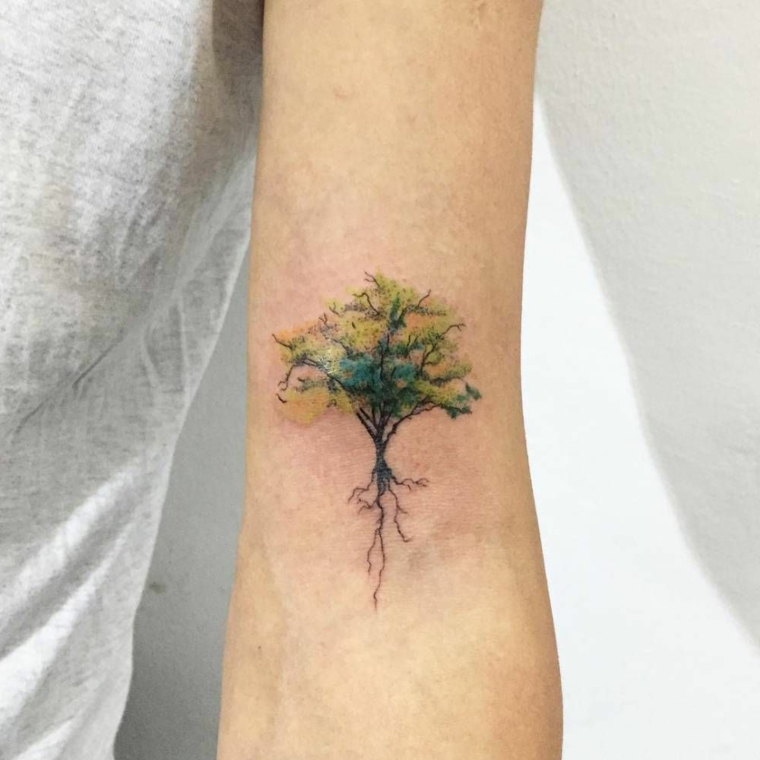albero della vita celtico disegno colorato tatuaggio donna tattoo avambraccio