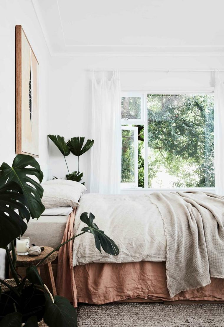 camera da letto piante da appartamento resistenti foglia verde larga lenzuola finestra