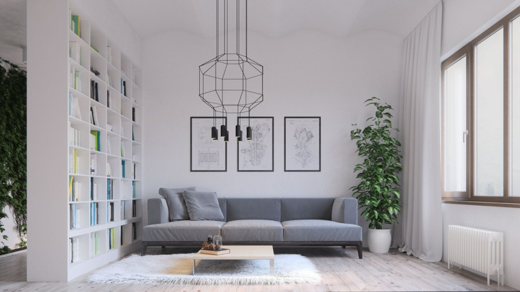 divani per piccoli spazi colore grigio piante da appartamento lampadario parete divisoria libreria