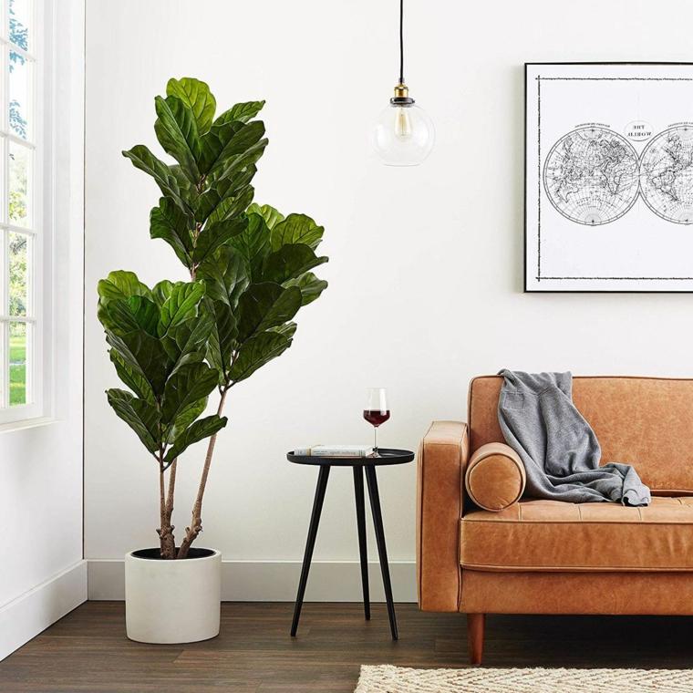 divano tavolino lampada piante da appartamento resistenti pavimento legno parquet tappeto