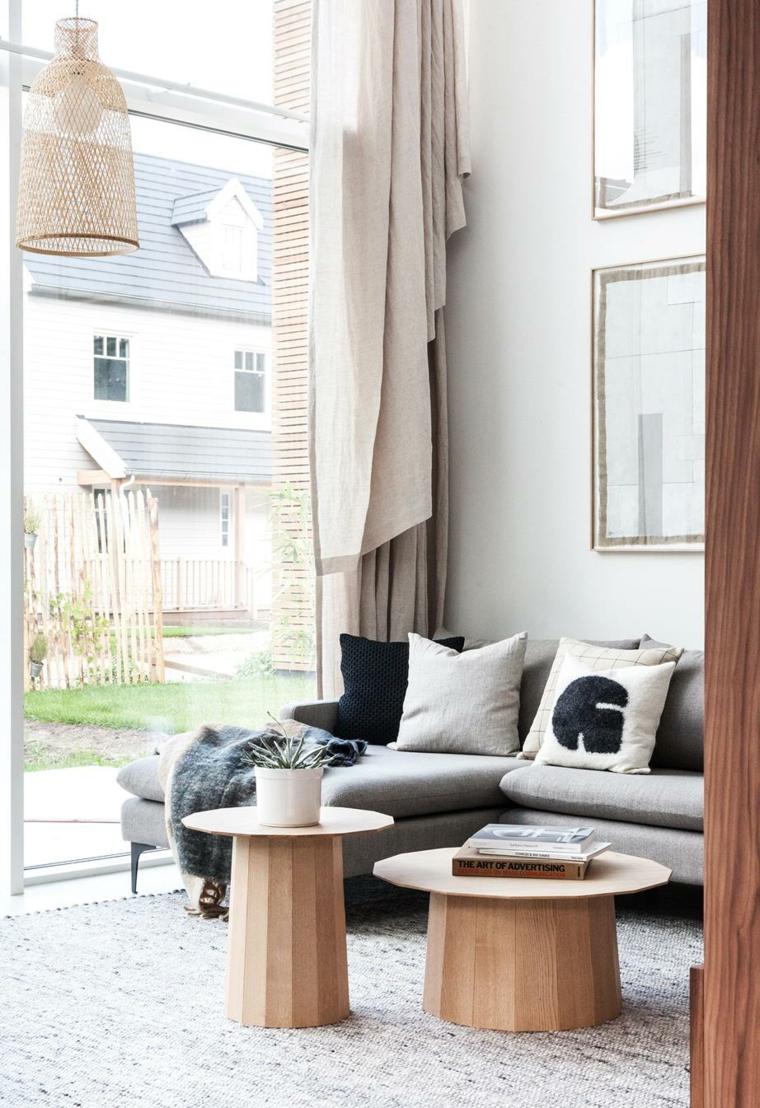 immagini di piante da appartamento resistenti vaso tavolini soggiorno divano tende finestra