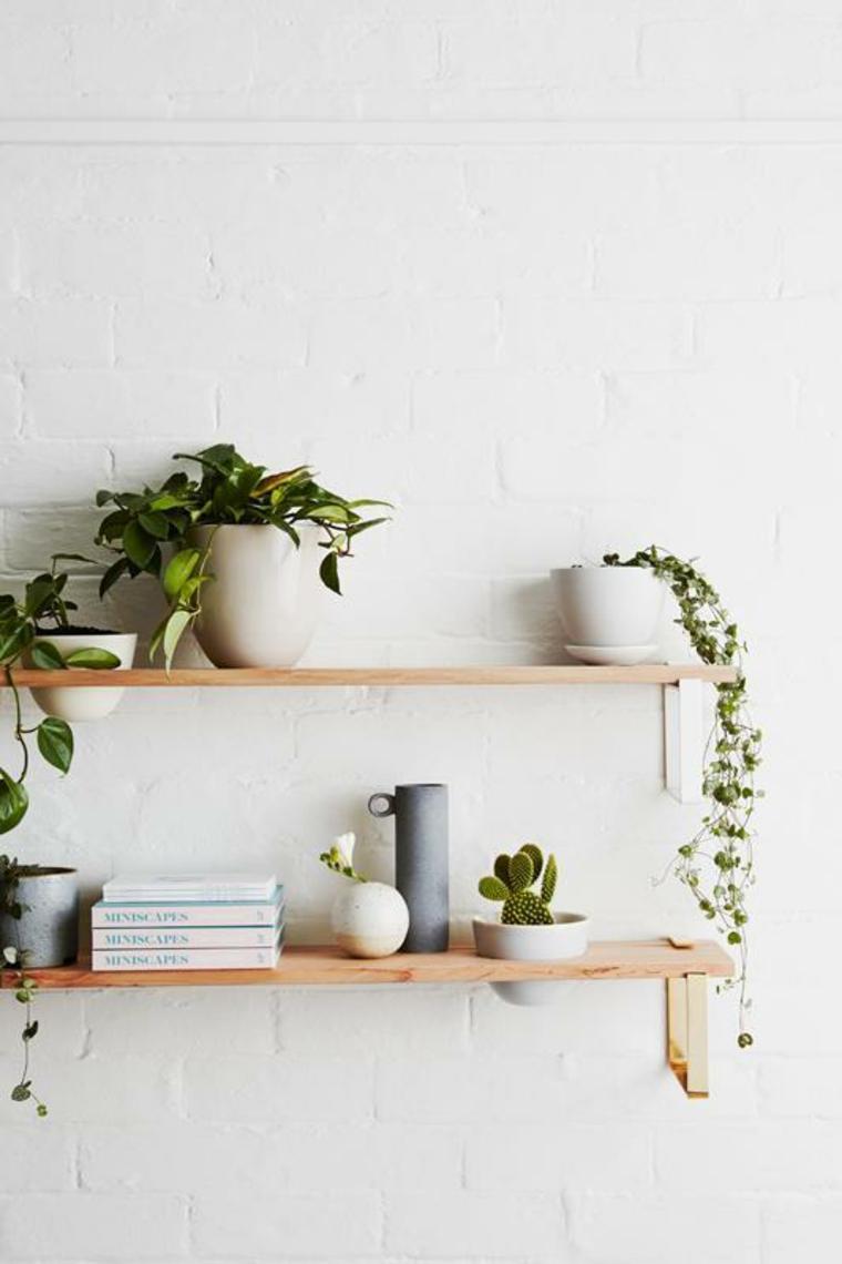 mensole di legno piante ornamentali da interno libri vasi parete bianca