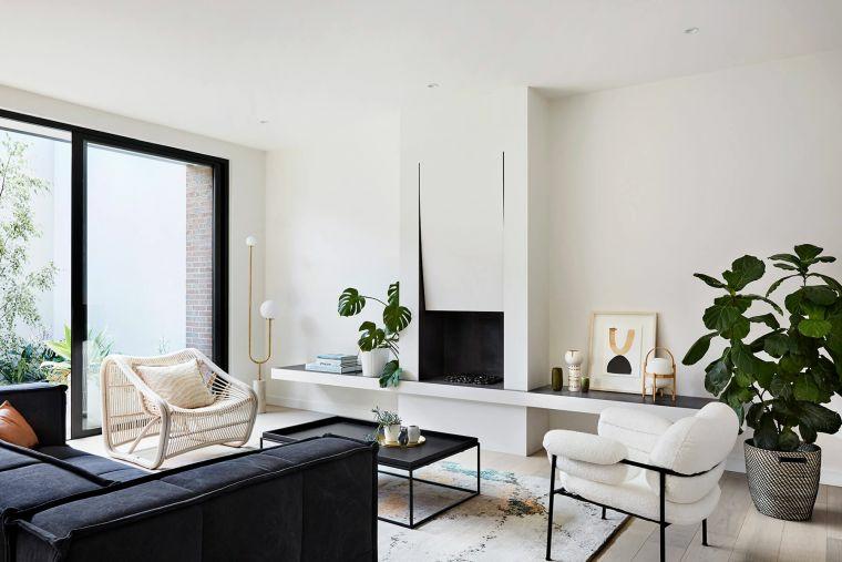 piante da appartamento foglia verde poltrone divano tavolino