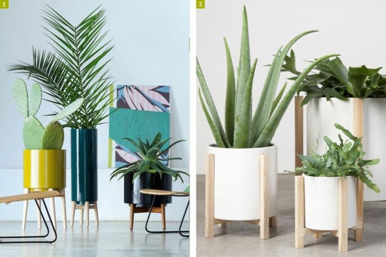 piante grasse con fiori da appartamento vasi legno soggiorno parete bianca