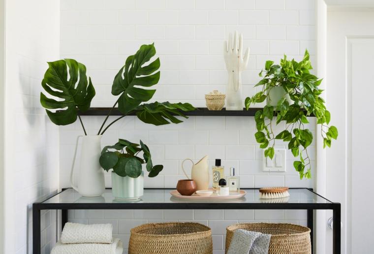 piante sempreverdi da interno tavolo vetro mensola vasi cesti decorazioni