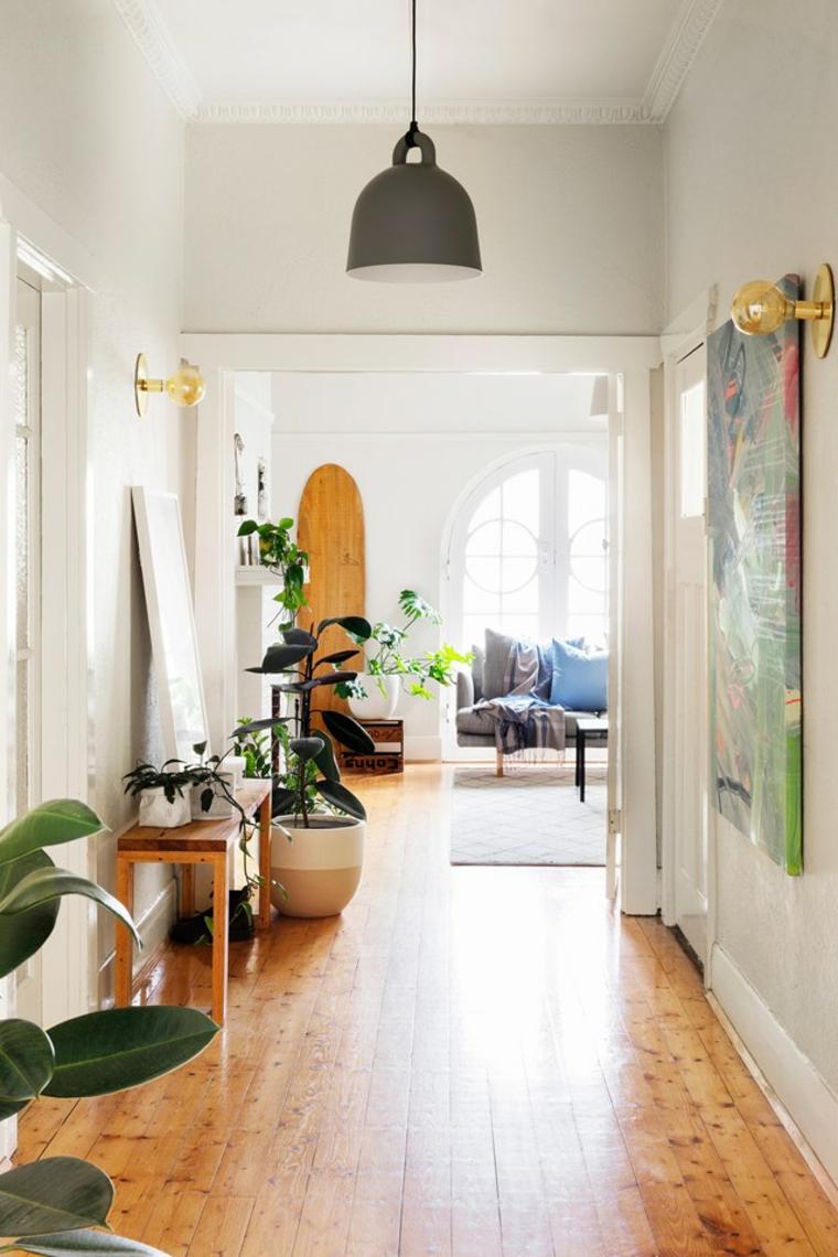 piante verdi da appartamento facili da tenere foglia larga corridoio casa pavimento legno lampada
