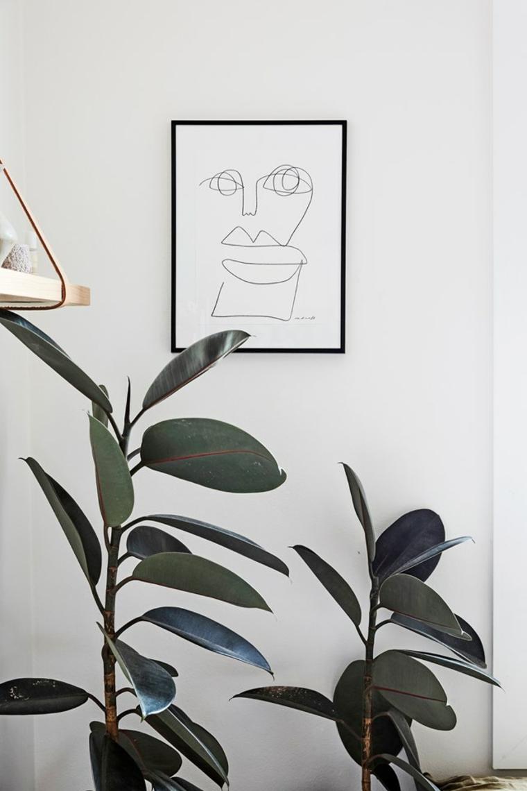 quadro cornice piante da appartamento quali scegliere foglia verde larga vaso