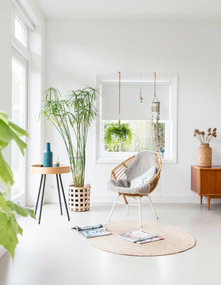 soggiorno poltrona tavolino piante da appartamento quali scegliere vaso mobile legno