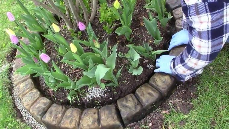 uomo aiuole da giardino in pietra piante fiori mattoncini erba prato verde