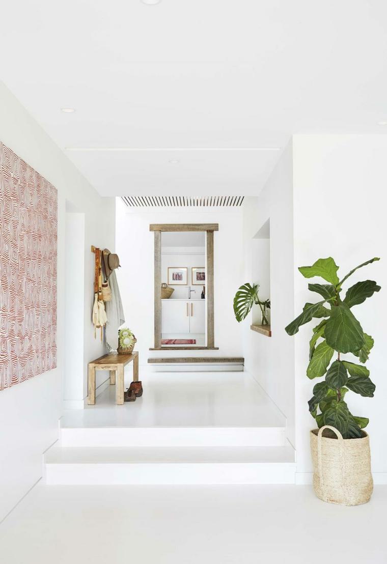 vaso borsa piante da appartamento depurative foglia verde larga corridoio casa