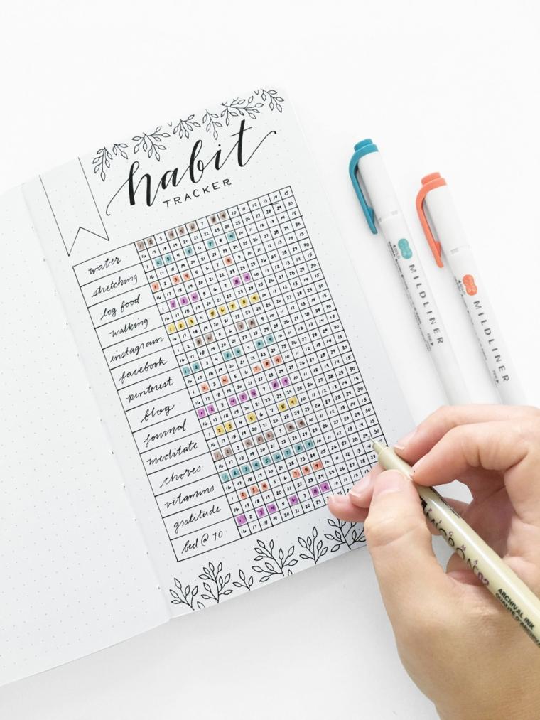 obiettivi scrivere bullet journal pennarelli colorati disegni fiori pagina quaderno