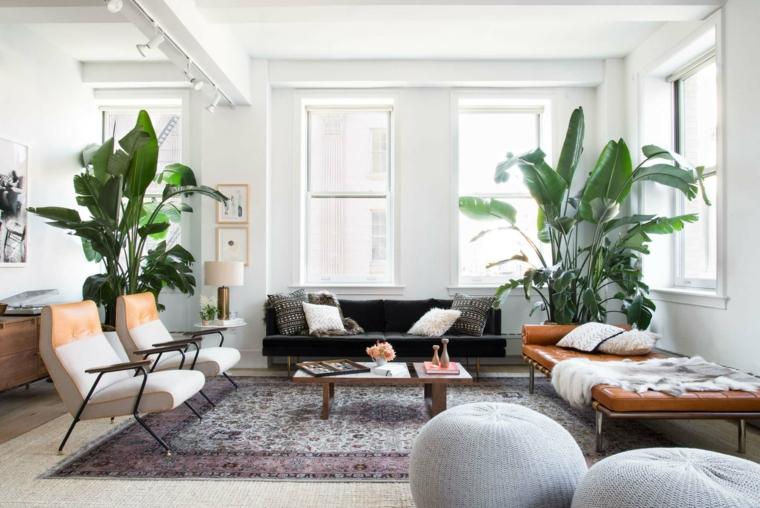 arredamento casa stile nordico pareti bianche con dinestre vasi con piante da appartamento