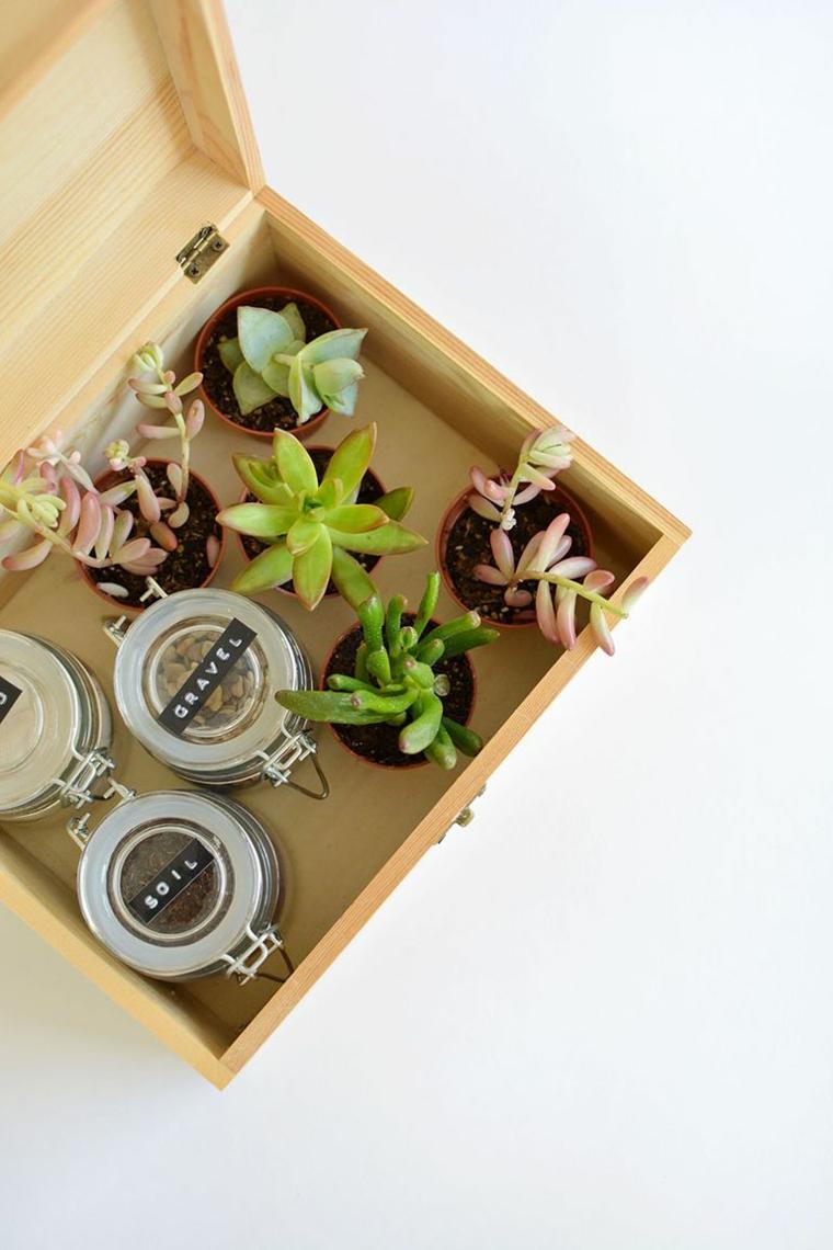 scatola di legno con mini piante grasse idea regalo natalizio per mamma