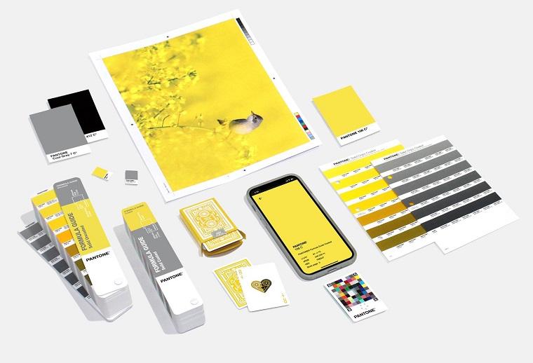 colori grafici giallo luminoso e grigio nuance dell anno 2021