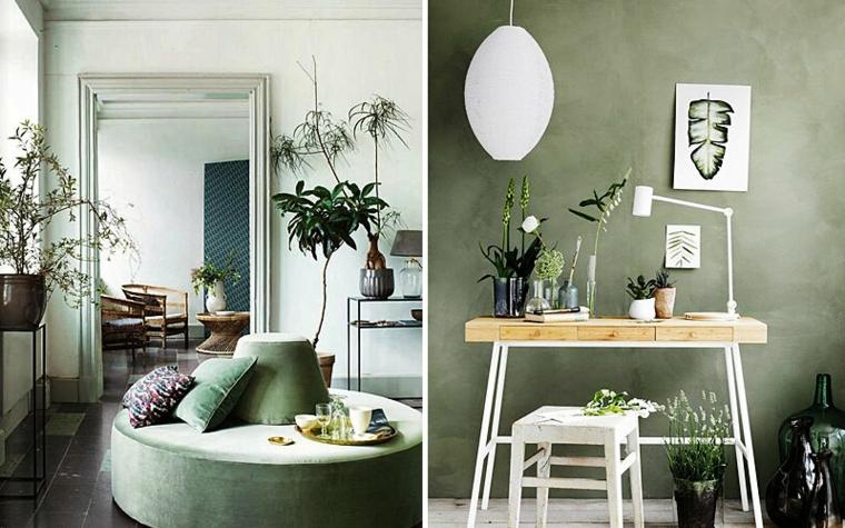 tonalità di verde per pareti interne colore salvia salotto con piante da appartamento