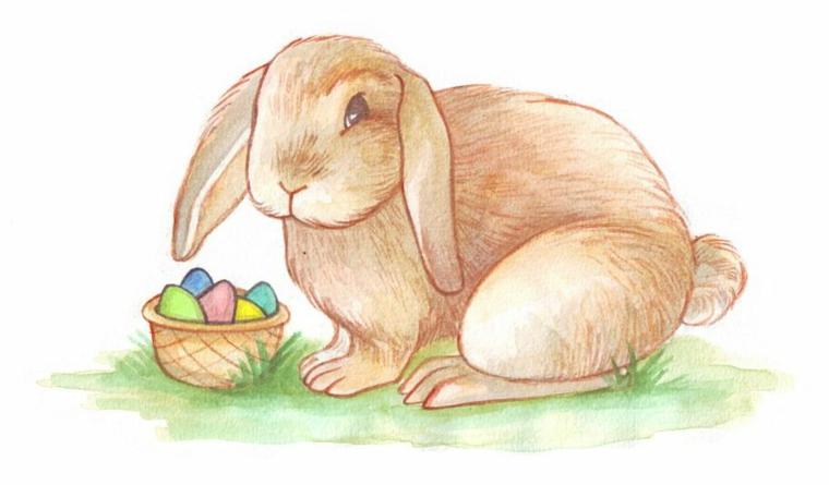 disegni uova di pasqua schizzo a matita di un coniglio pasquale