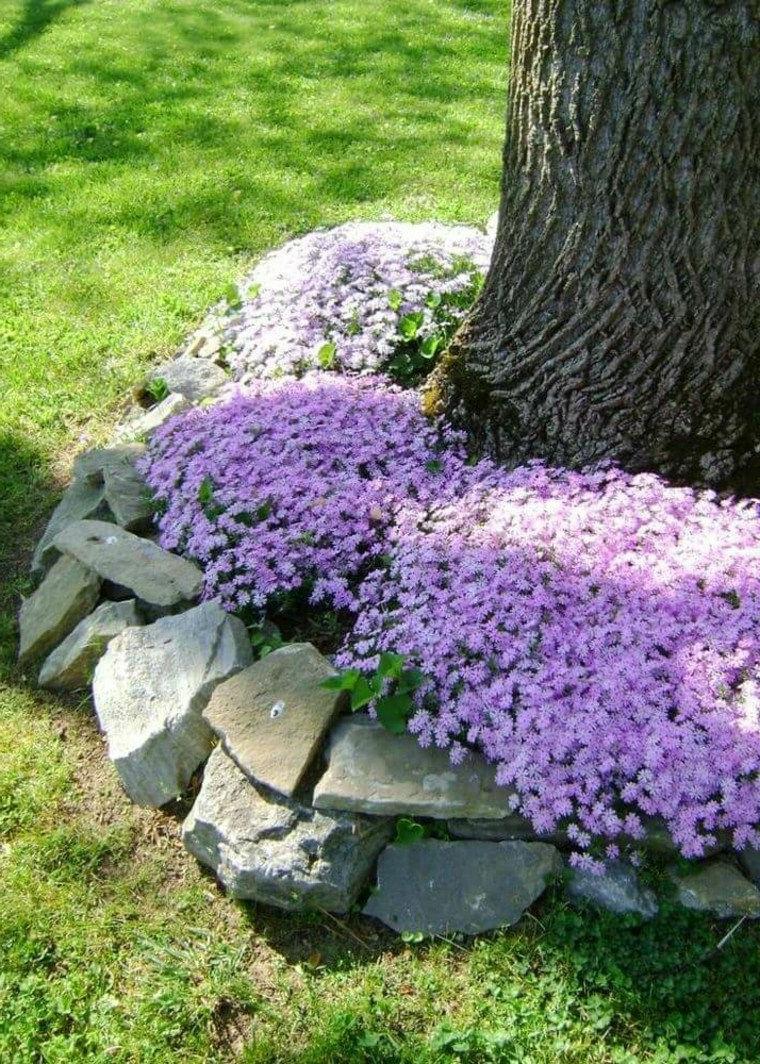 abbellire il giardino con pochi soldi aiuola con piante viole e sassi