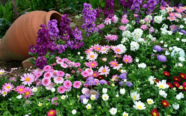 aiuole con piante grasse e sassi decorazione giardino con anfore e fiori colorati