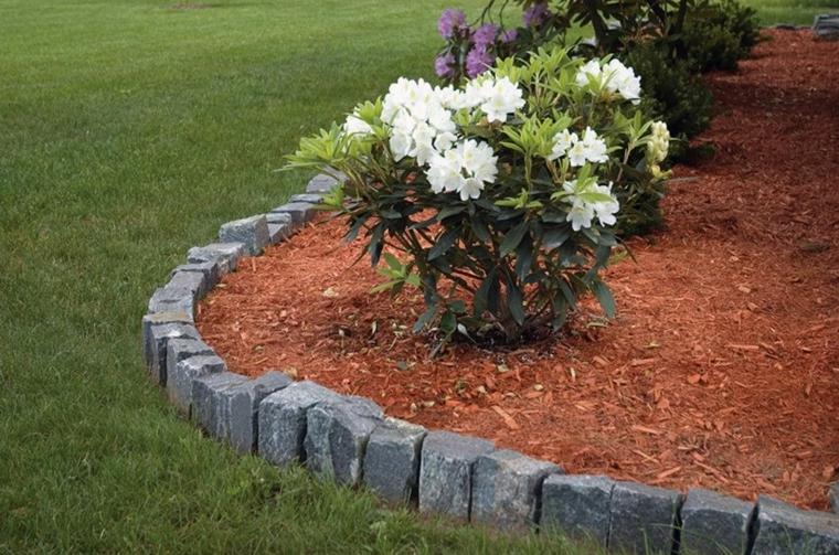 bordure aiuole fai da te decorazione giardino con piante dalla foglia bianca
