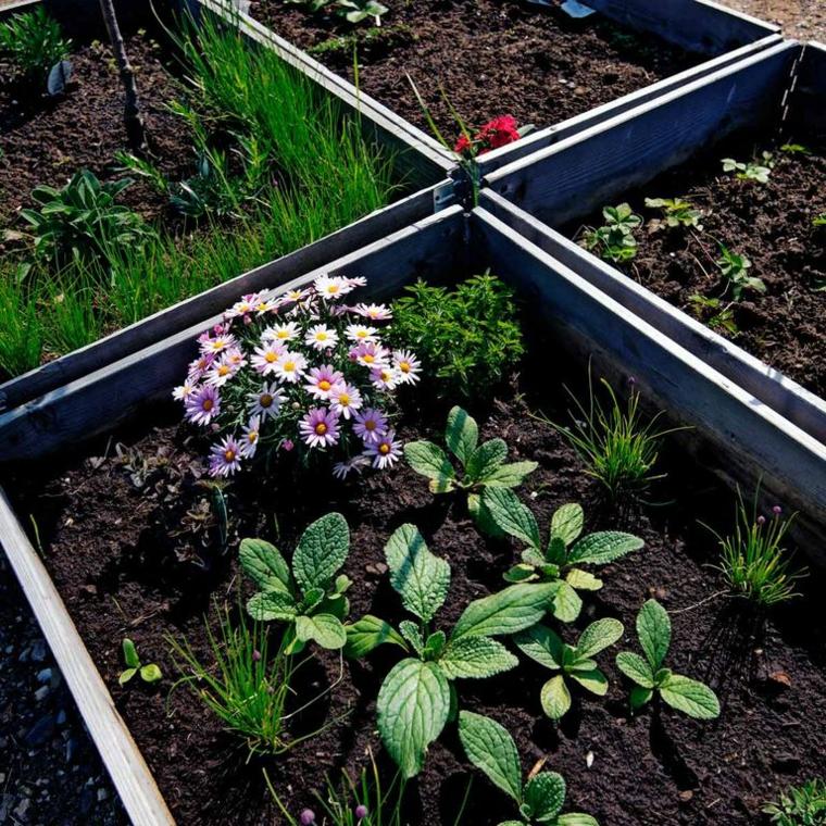 bordure in legno per aiuole da giardino fai da te con fiori e verdura