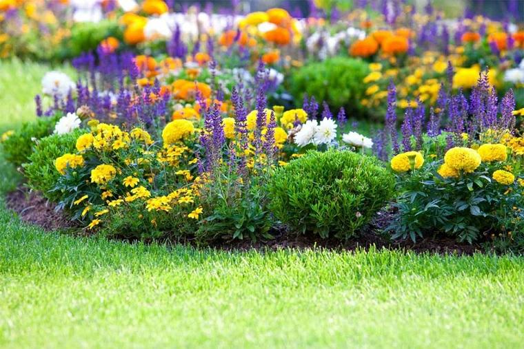 giardino con prato verde aiuole economiche fai da te fiori foglia colorata