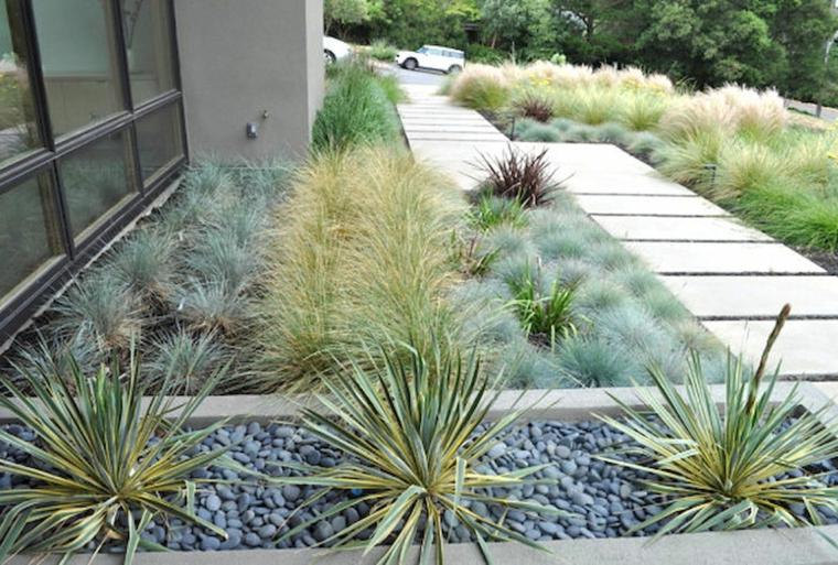 idee per aiuole giardino fai da te sentiero con mattonelle bianche piante succulenti