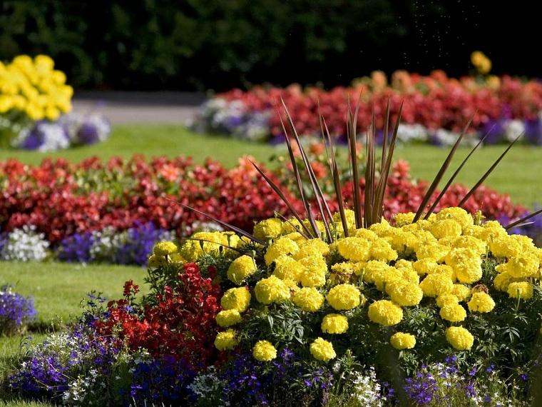 quali sono i fiori perenni per aiuola giardino con prato verde