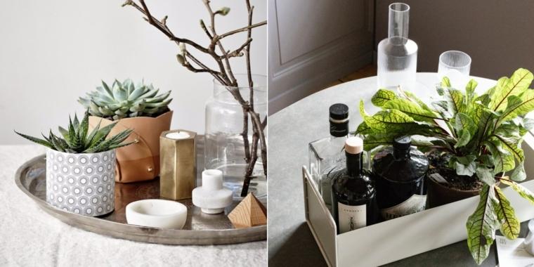 centrotavola con vaso bianco di pianta succulenta composizioni floreali