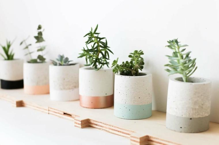 decorare le pareti con mensole di legno vasi di ceramica con piante grasse da appartamento