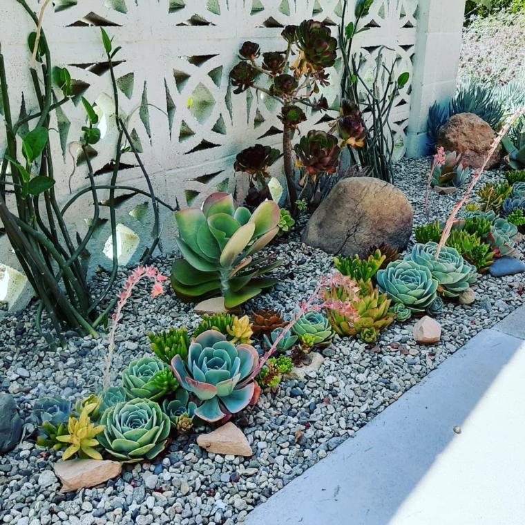 ghiaia da giardino piante grasse da esterno senza spine