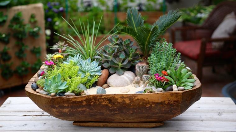 giardino in miniatura terrarium vaso di legno con piante grasse e sassi