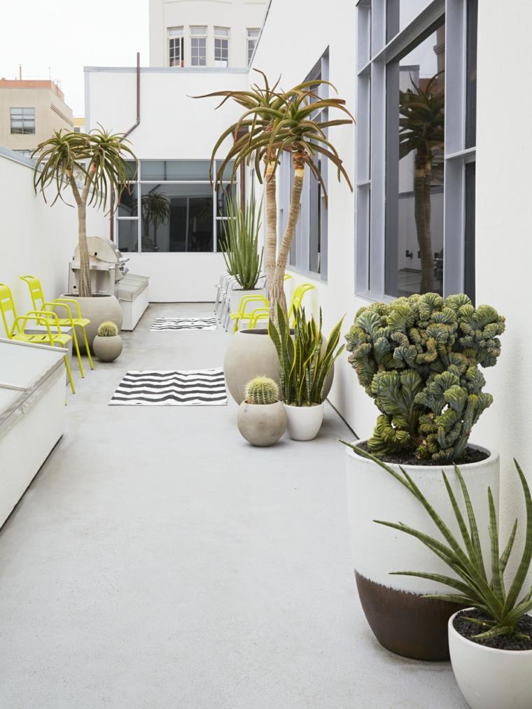 giardino moderno con vasi di piante grasse outdoor succulente senza spine