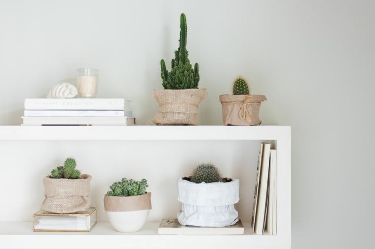 mensola da parete decorata con vasi di succulente piante grasse con fiori