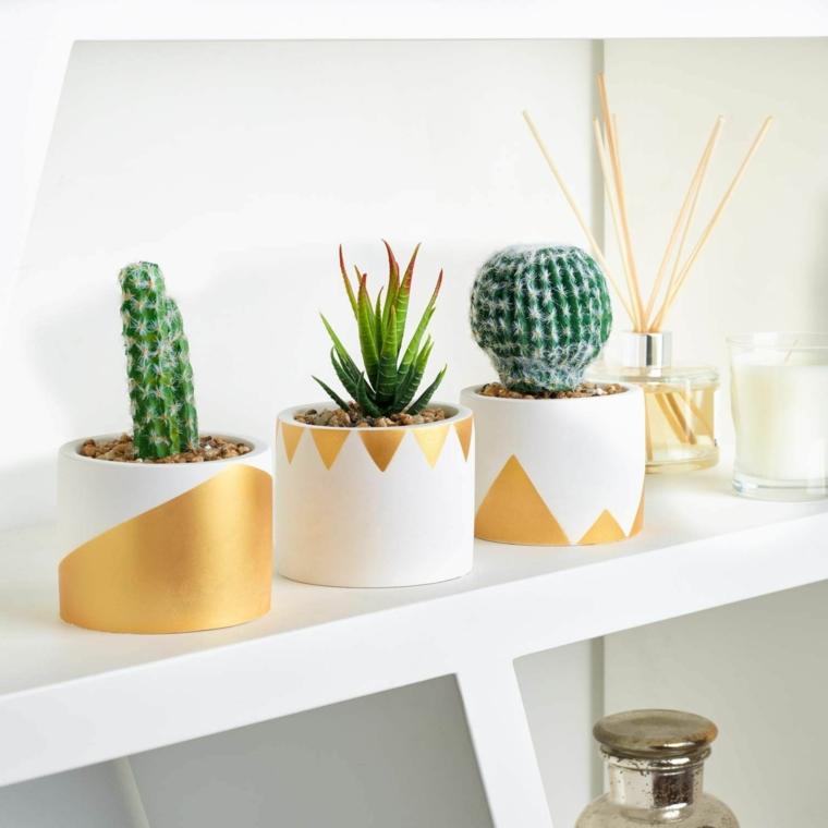 mensola di legno con vasi bianchi decorazione con piante succulente